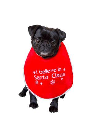 black pug: Black Pug Wearing Christmas Bib