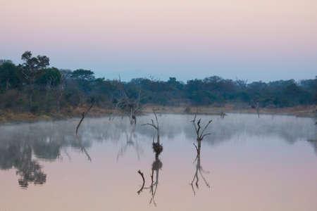 Dusk over a misty dam in the wild