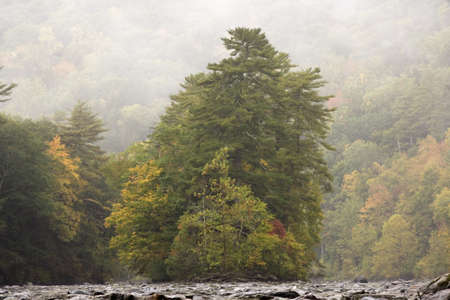 An island filled with trees rises in the middle of a river on a wet, rainy day. Fall foiliage. Stock Photo