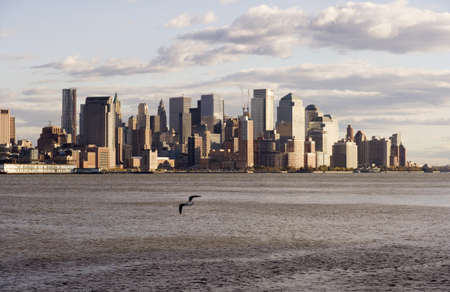 A seagull in the foreground flies over the Hudson River. Downtown New York City is on the far shore of the river.