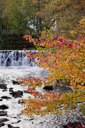 The reds and yellows of autumn leaves mix in a mild breeze in front of a small waterfall close to dusk photo