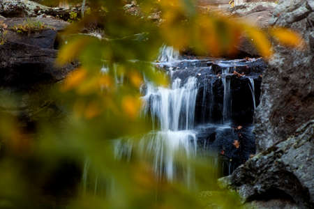 Water flows over a small waterfall with foliage in the foreground Stock Photo