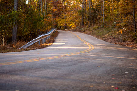 On a late afternoon fall day, a road through the woods appears to go no where. Stock Photo