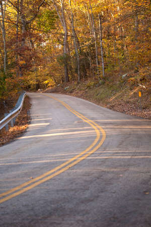 Double yellow lines divide a country road through the autumn woods Stock Photo