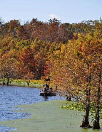 bayou swamp: A fisherman enjoying a nice Autumn afternoon Stock Photo