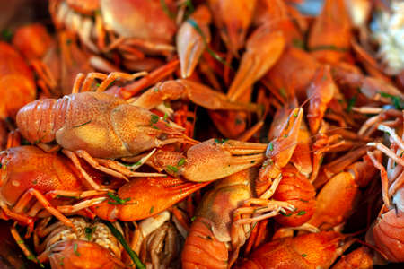 A lot of red boiled crawfish