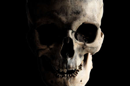 Contrast image of a real human skull on a dark background. Laughing skull. Jolly Roger. Isolated on black.
