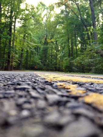 open road: Low down shot of an open road through the woods.  Stock Photo