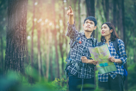 Amid the pine forests, young men and young women hikers Asians are reading a map. They are travelers, adventure lovers of nature. Studying the ecology of rainforests. The man pointing to what he sees