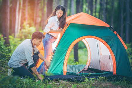 Young Asian couple working together tent on the grass amid the pine forest. Evening sunlight and the trees and the green field in the background. People and adventure camping concept. Imagens