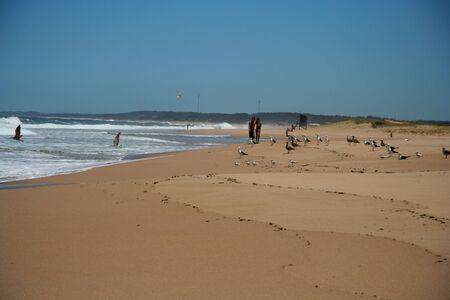 brazil beach: Brazil beach