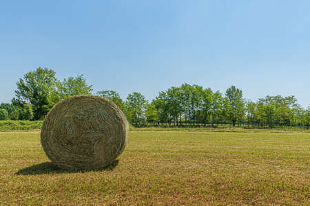 Summer landscape of a meadow with a bale of hay, field of cut grass under a blue sky Stock Photo