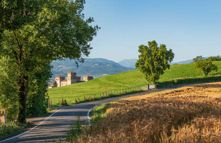 Country road through green fields and fields of wheat, in the background an ancient castle in the province of Parma, in Emilia Romagna, Italy Banco de Imagens