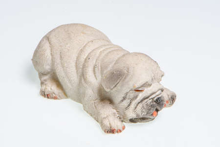Miniature depicting an English Bulldog breed dog on a white background