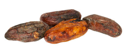 cocoa beans: Fully raw premium cocoa beans