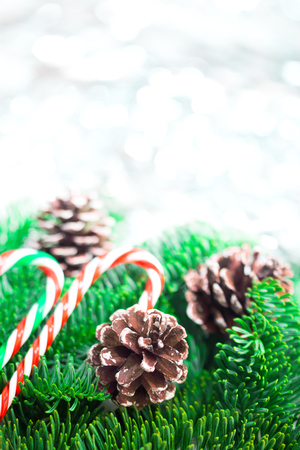 Christmas tree branches with candy canes on white wooden desk. Flat lay space for text.