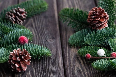 Christmas tree branches with cones and frozen berries. Rustic new year. 版權商用圖片