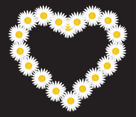 Daisy flower heart shape Stock Vector - 15770289