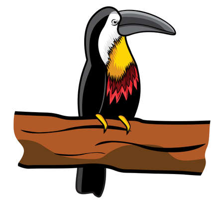 Beautiful toucan on branch Stock Vector - 15770382