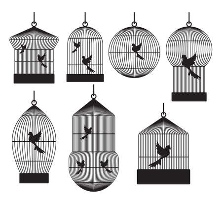 confined: Bird cages