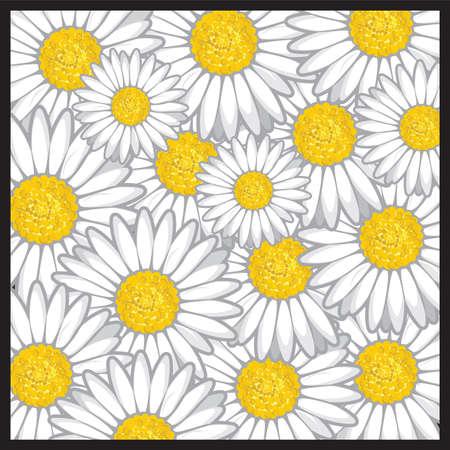 margerite: Daisy flower pattern Illustration