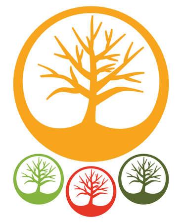 oak tree isolated: Tree icon