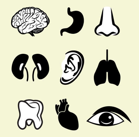 organs icon set Stock Vector - 18094787