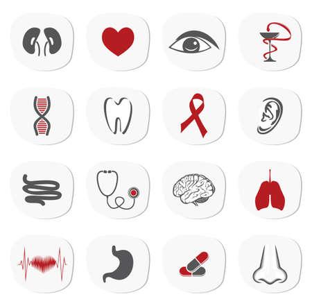 gastric: organs icon set