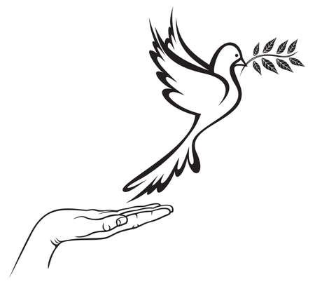 paloma: Paloma de la Paz