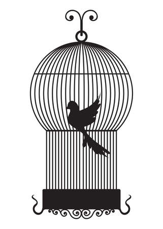 confined: Bird cage Illustration