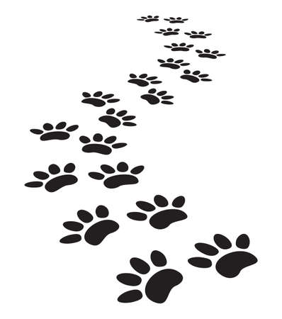 hunting dog: animal paw prints Illustration