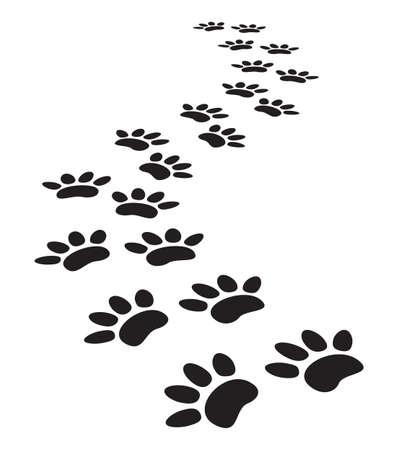 patas de perros: huellas de animales
