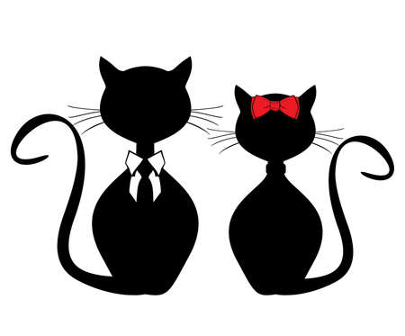 valentine cat: Black cats