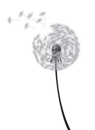dandelion seed: dandelion