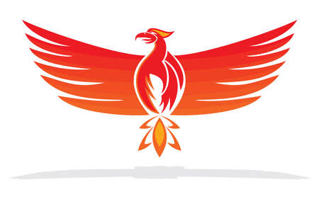 Phoenix bird illustration Vector