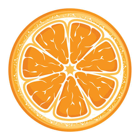 Slice of orange Stock Vector - 18499110