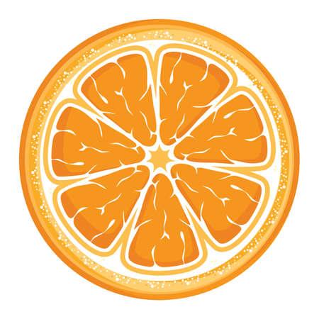 Slice of orange Stock Vector - 18499110