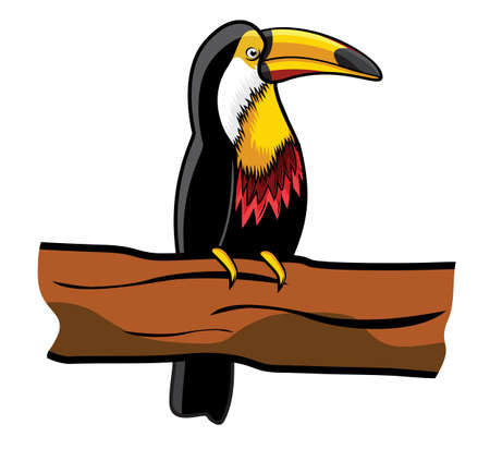 laughable: Beautiful toucan on branch