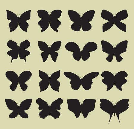 tatuaje mariposa: colecci�n de mariposas