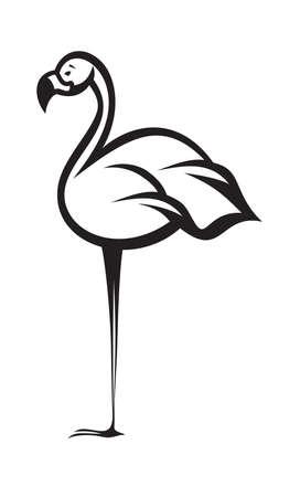 flamenco ave: flamencos de dibujos animados