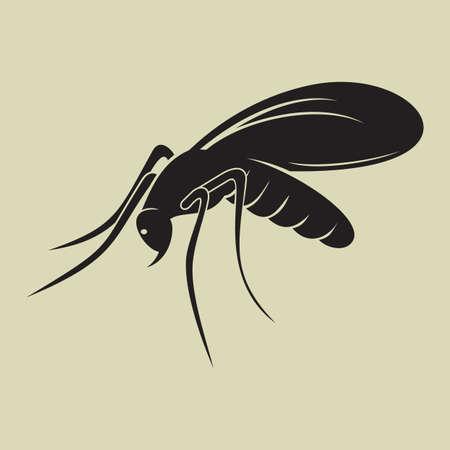 mosquito Stock Vector - 20504171