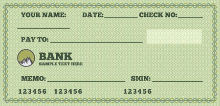 cheque: Blank check
