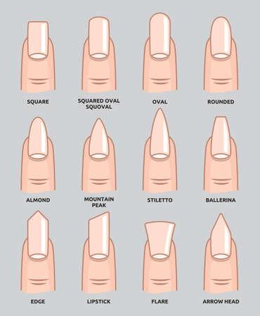 Diverse forme di unghie - Unghie Tendenze moda Archivio Fotografico - 38126186