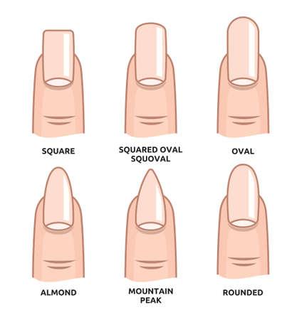 forme: Différentes formes d'ongles - ongles tendances de la mode Illustration