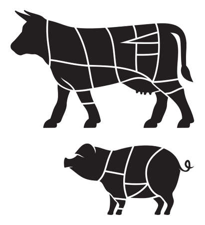 veal: Cuts of beef and Pork meat cuts illustration