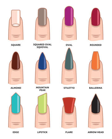 frances: Diferentes formas de uñas - uñas tendencias de la moda Vectores