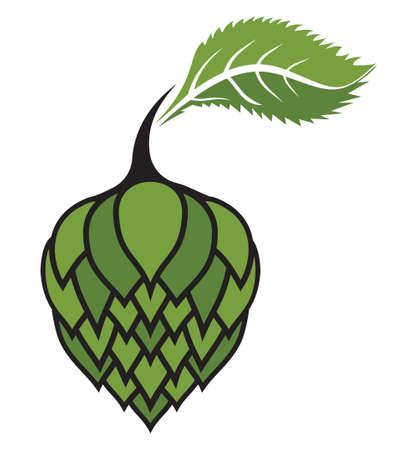 hop cone: Hops vector illustration