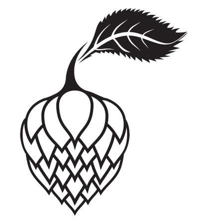 hop cone: Hops vector icon Illustration
