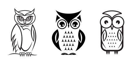 night owl: Vector owl collection