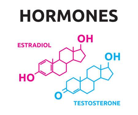 Hormonas - estradiol y testosterona
